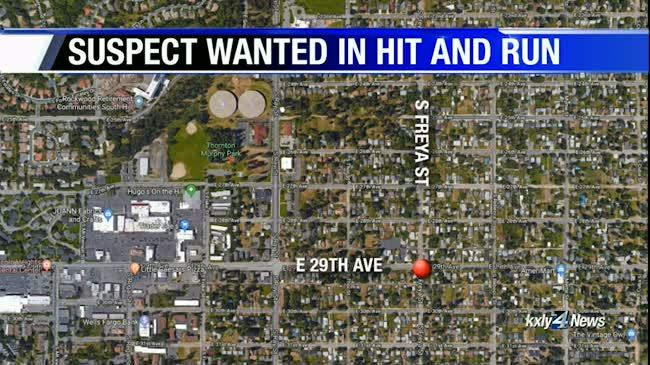 SPD looking to identify hit-and-run driver who hit child