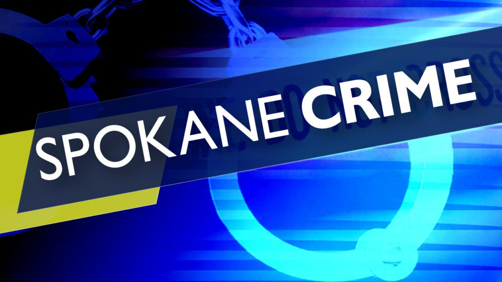 Spokane police find stolen truck with dog inside, arrest suspected thief