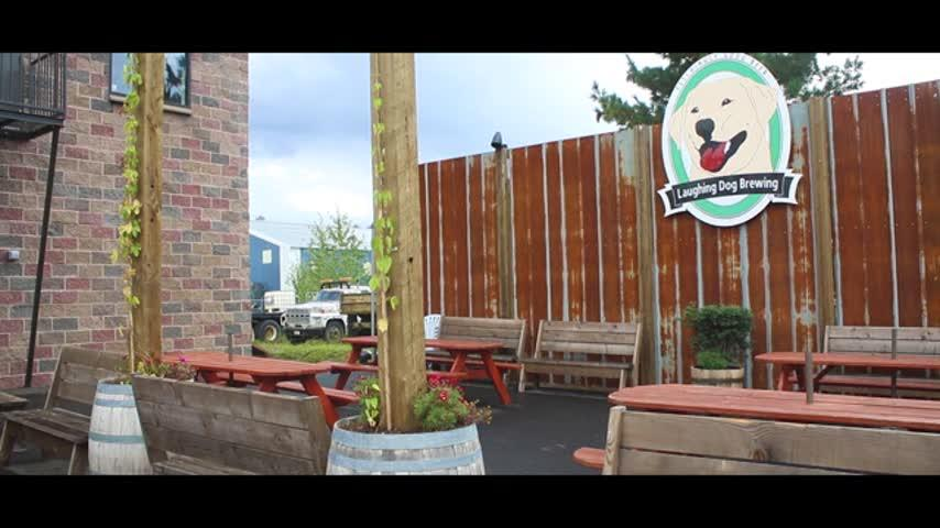 Spotlight Spokane: Laughing Dog Brewery