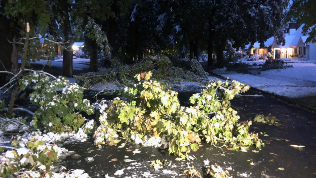 South Hill neighbors assess snowstorm damage