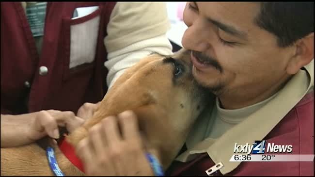 Stray dogs become inmate therapy at Airway Heights prison