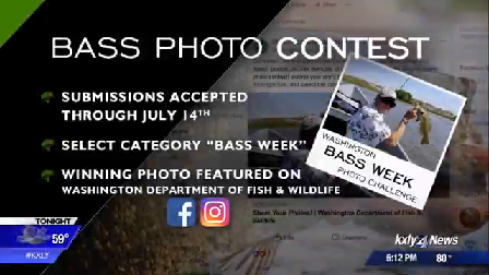 Submit your best bass photo to WDFW
