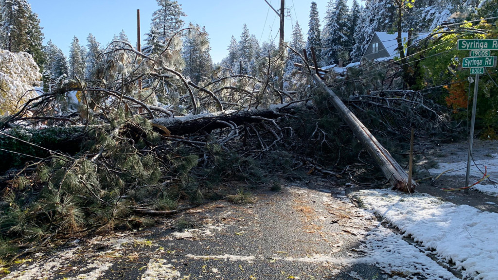 Spokane residents contend with fallen trees, downed power lines