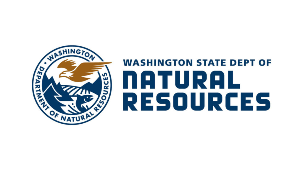 Washington organizations awarded forest health grants from DNR