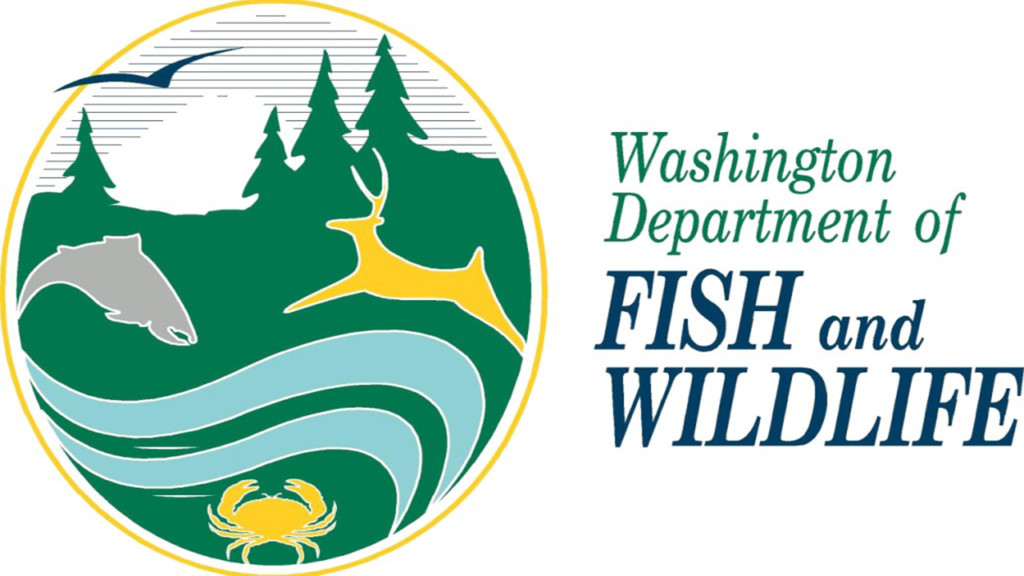 Snake River spring chinook fisheries to open