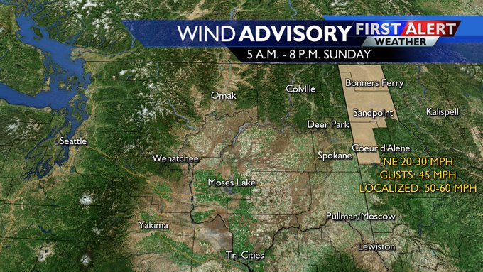 Strong winds and showers move into region Sunday