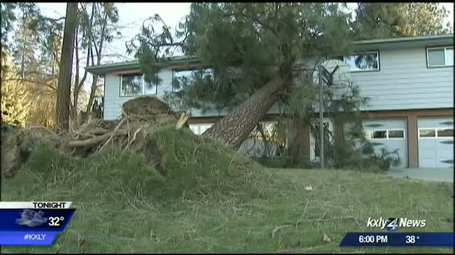 Windstorm 2015: Two years later