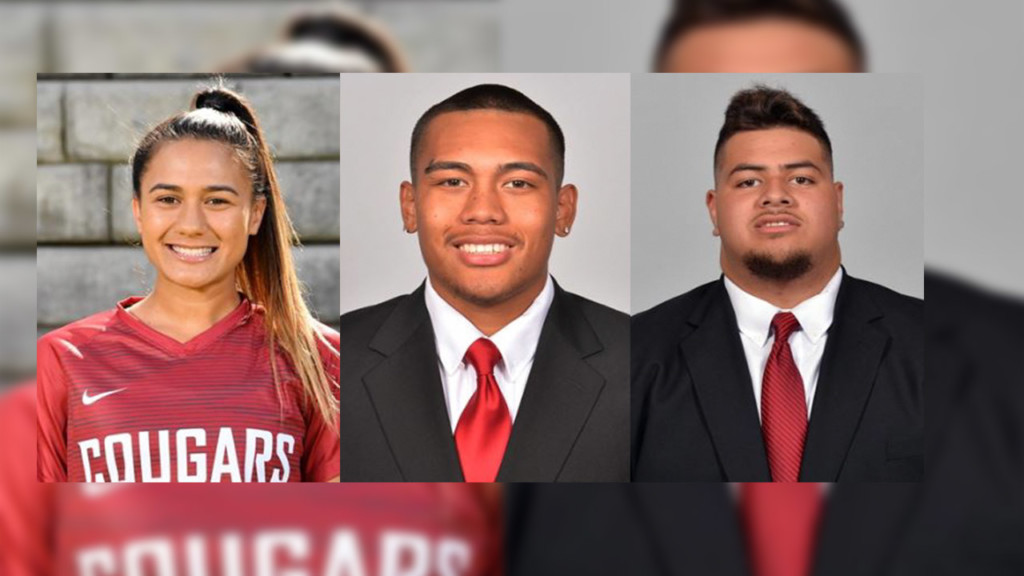 2 WSU football players, 1 soccer player arrested for vandalism on Pullman's College Hill