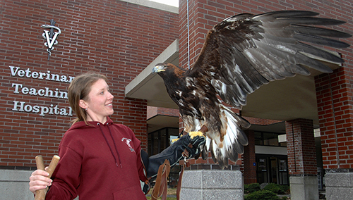 WSU Raptor Club wants to protect birds of prey