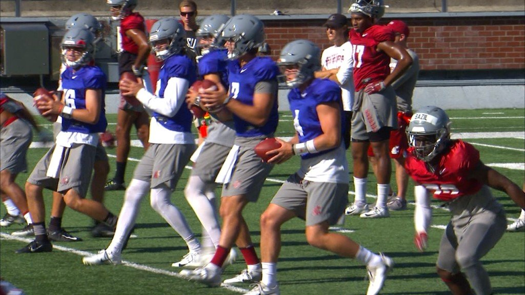 WSU still deciding on quarterback 10 days into fall camp