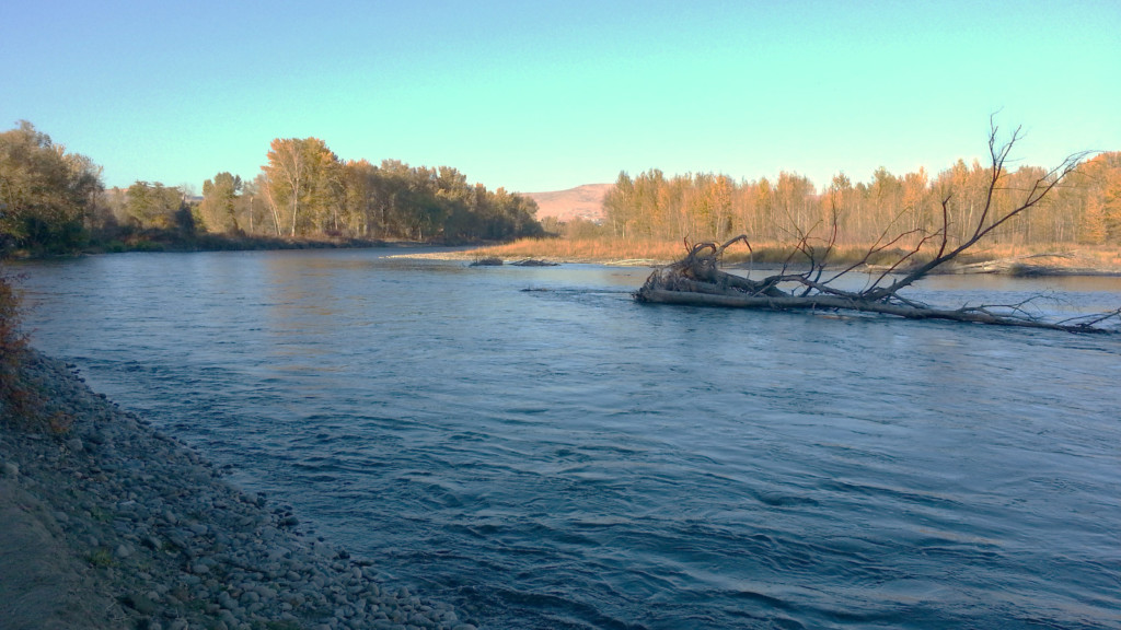 Man rescued after being stranded on log in Yakima River