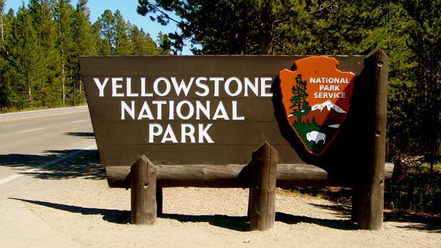Proposal to increase national park fees hopes to protect Yellowstone wildlife