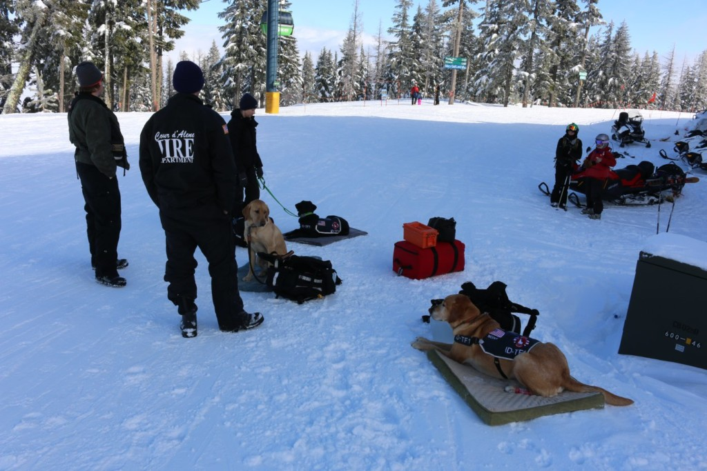Idaho Disaster Dogs, seen here in this photo from a past training, called in to help with avalanche