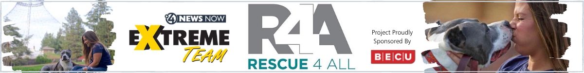 extremeteam-rescue4all-project-webpage-header