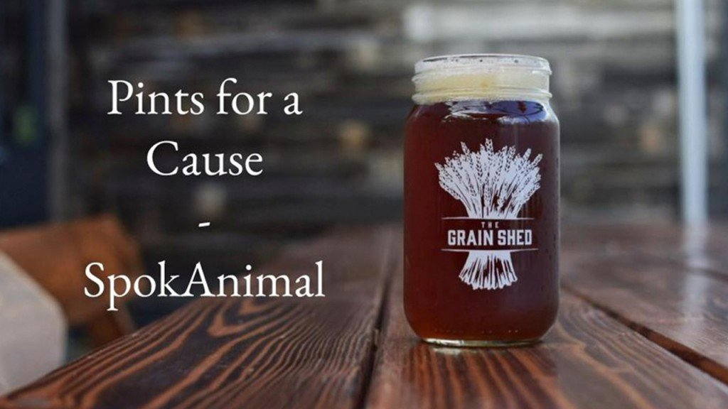 Pints for a cause happening at the Grain Shed