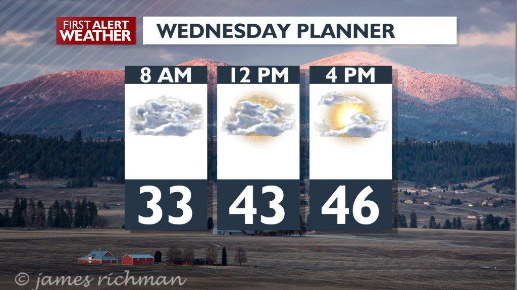 Wednesday Day Planner