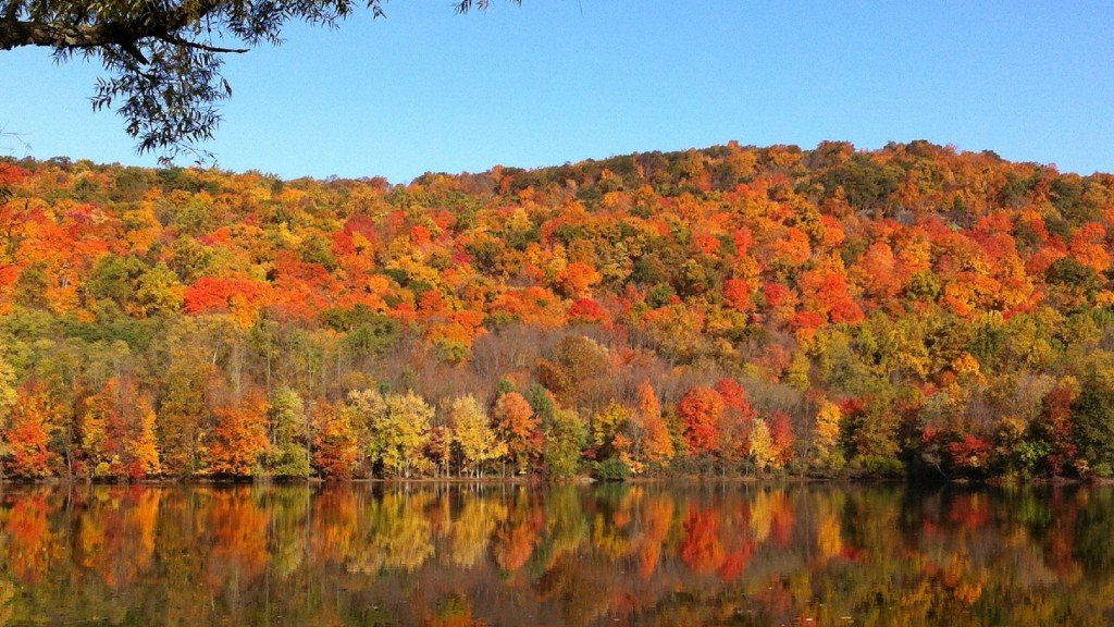 5 things you may not know as the first day of fall arrives