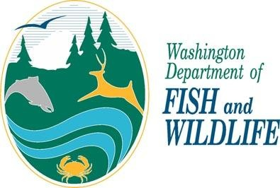 Department of Fish and Wildlife approve cougar hunting regulation amendments
