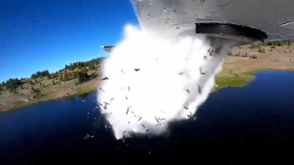 Utah stocks lakes by dropping fish from plane