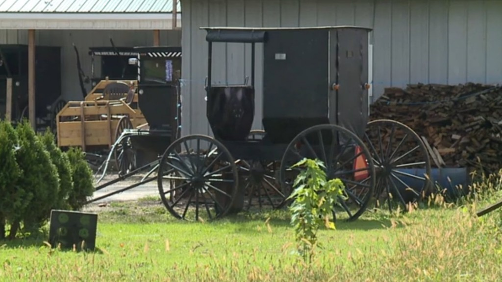 2 Amish men escape police after being pulled over for DUI in buggy