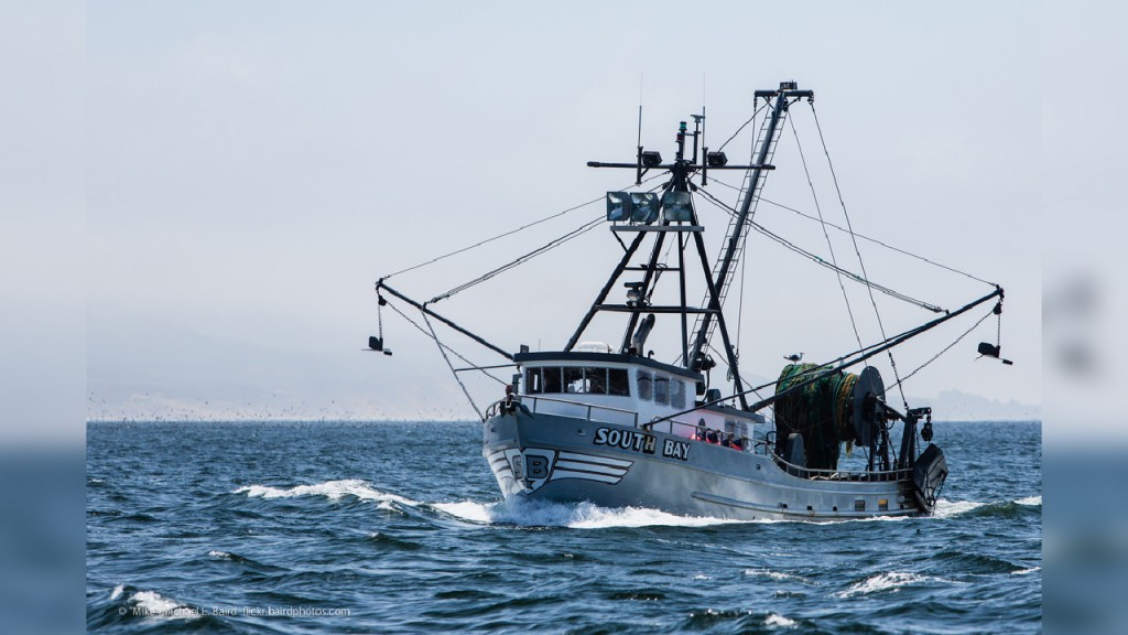 Crew rescued after fishing boat catches fire, washes ashore