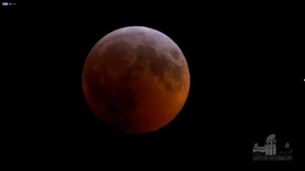 Stargazers share images of super blood wolf moon