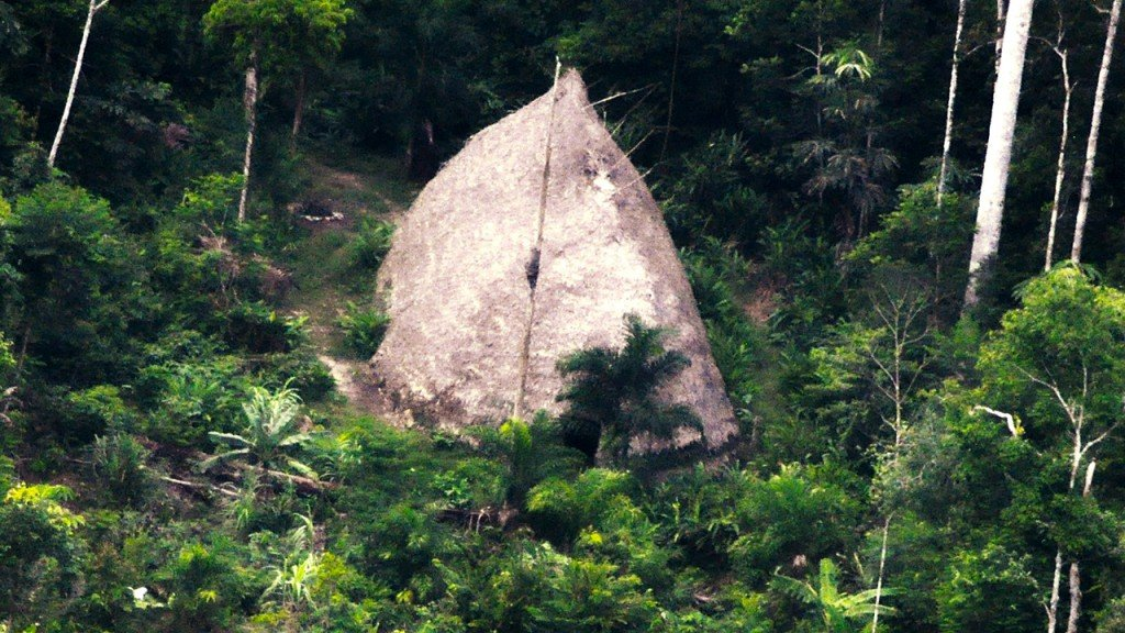 Never before seen Amazon tribe caught on drone video