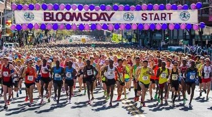 Bloomsday a race of wits for Corporate Cup teams