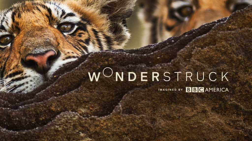 With 'Wonderstruck,' BBC America wants to give break from news