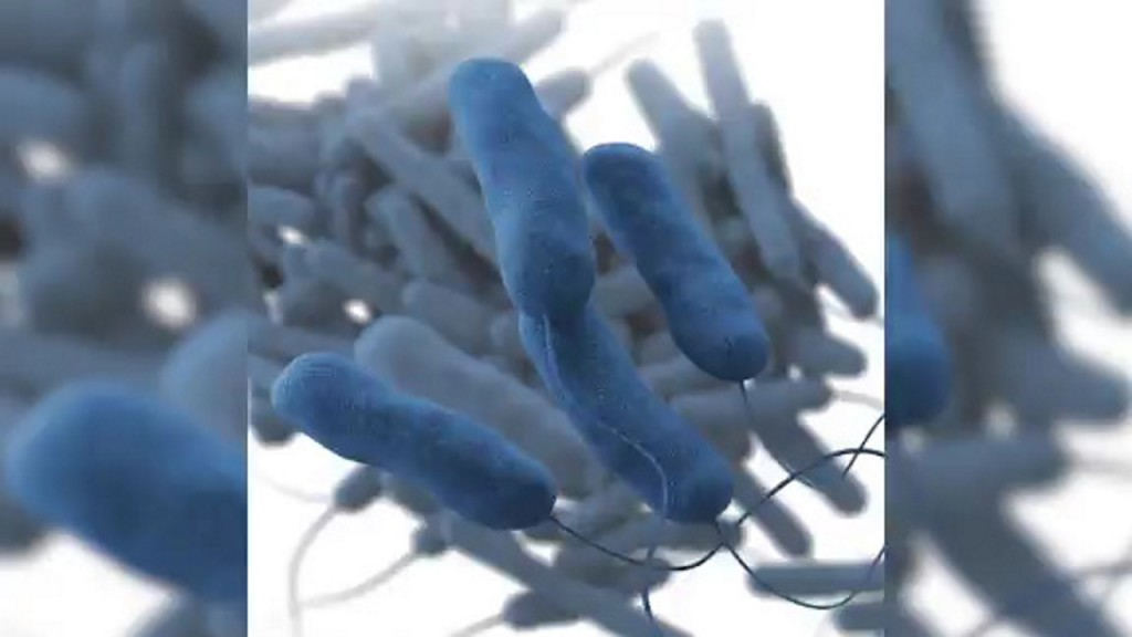 Death toll rises in Legionnaires' disease outbreak in North Carolina