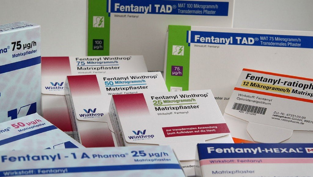 Report: Fentanyl deaths in US skyrocket over 1,000% in 5 years
