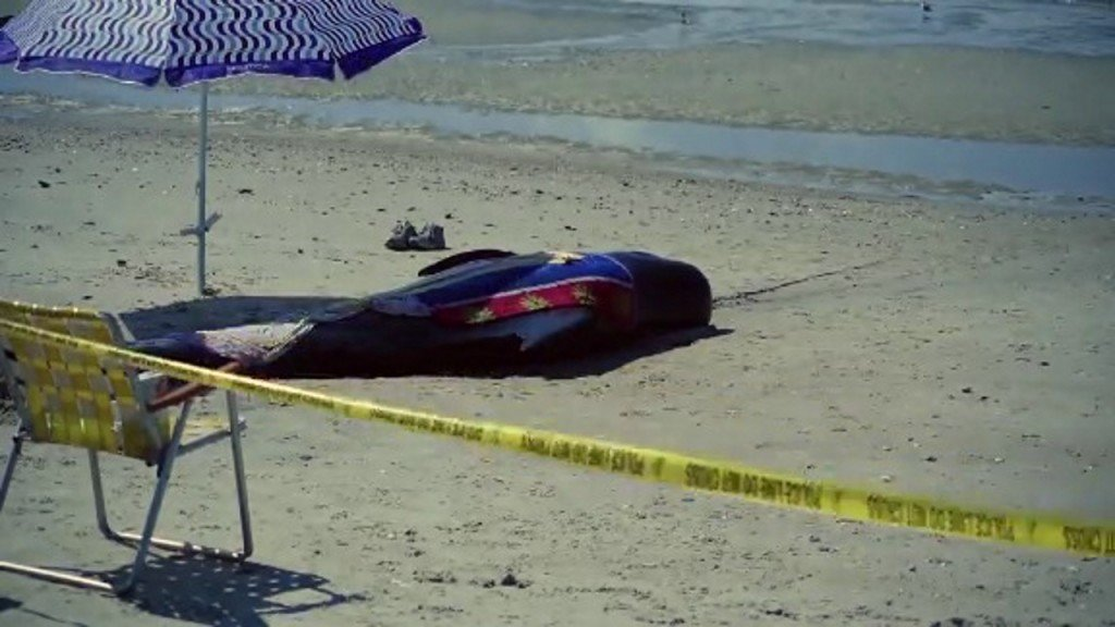 Whales die after getting stranded on South Carolina beach
