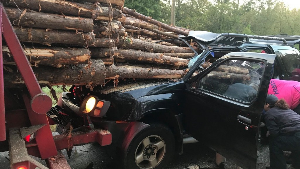Georgia driver rescued after car impaled by logs