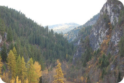 DNR Expands Comment Period for Trombetta Canyon Proposal