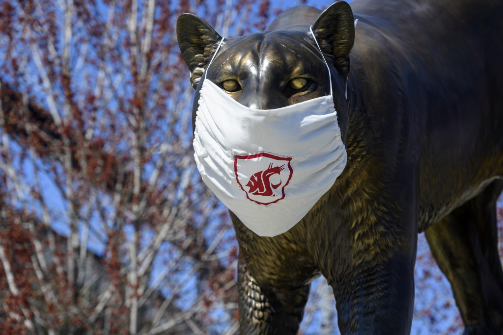 Cougar Pride With A Covid 19 Coronavirus Mask