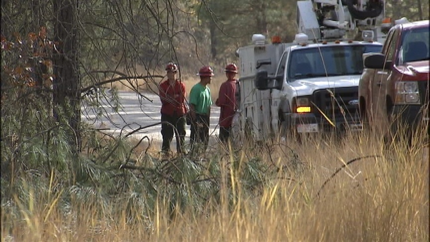 Inmate clearing brush electrocuted in Stevens County