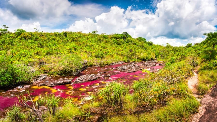 Caño Cristales: Colombia's spectacular 'liquid rainbow'