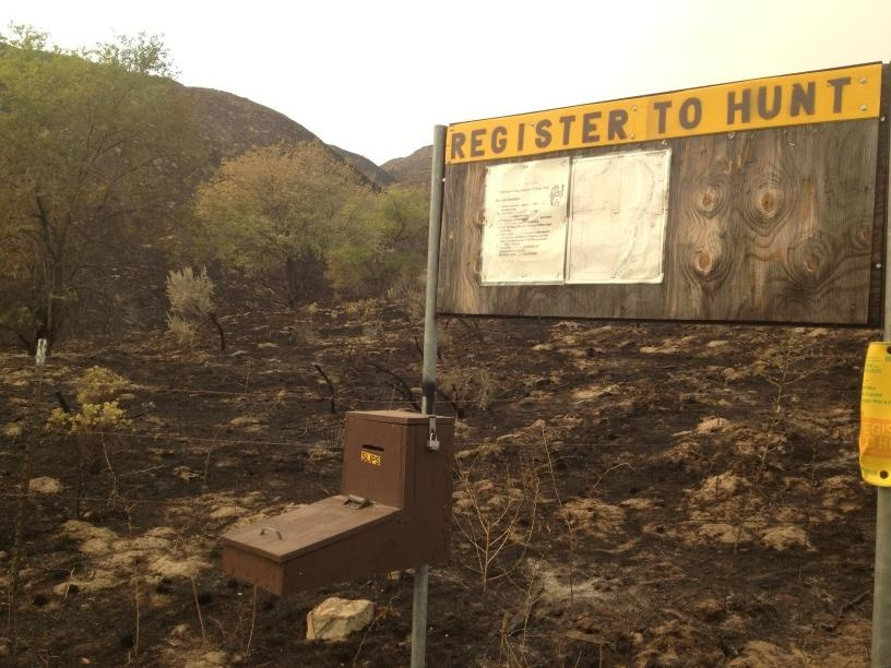 Nearly 20K acres of sagebrush burned near Grand Coulee