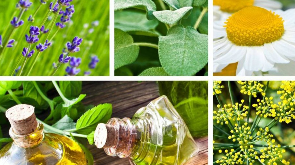 Home Remedies: Herbal treatment for anxiety