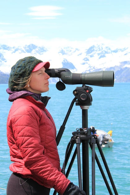 Coordinator Helps Search For Mustelids (Weasels)