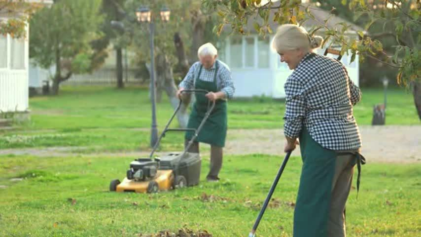 News 4 Your Life: Lawn Care