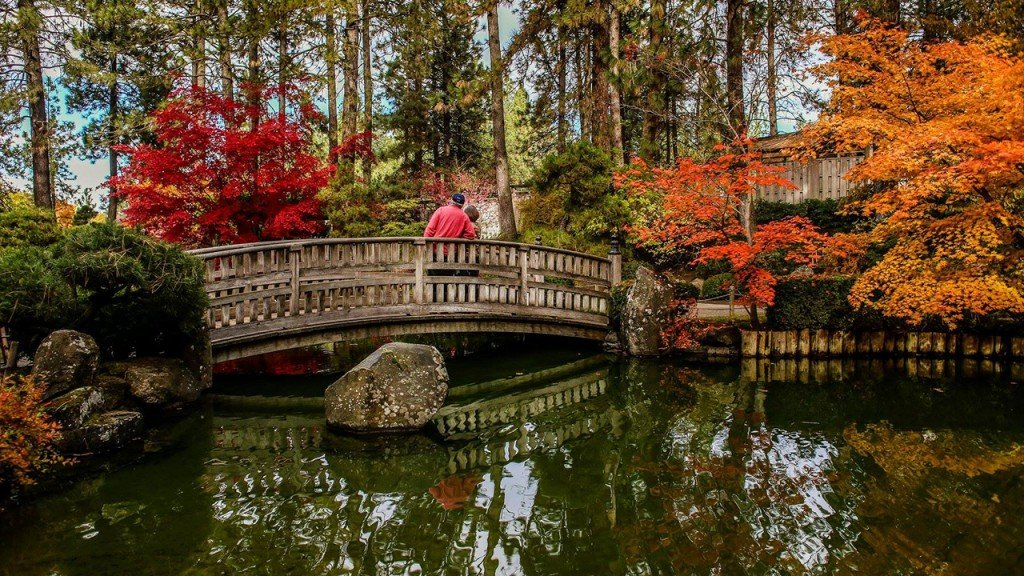 Air 4 Adventure: Japanese Garden