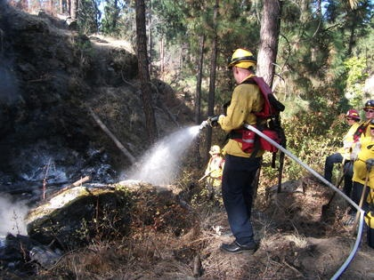 Brush fire burns in Mirabeau Park Natural Area