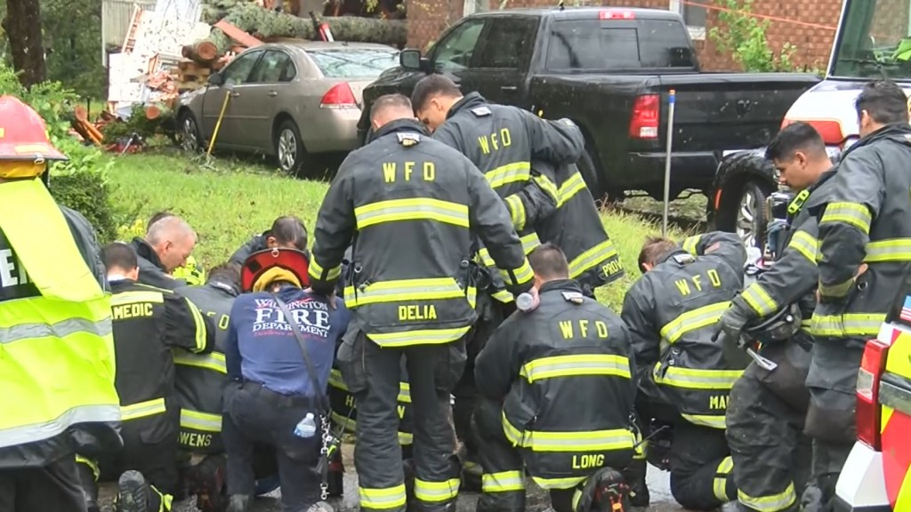 Firefighters kneel, pray after mother and baby die from falling tree