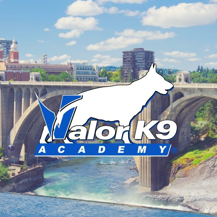 Valor K-9 Academy offering private puppy training classes