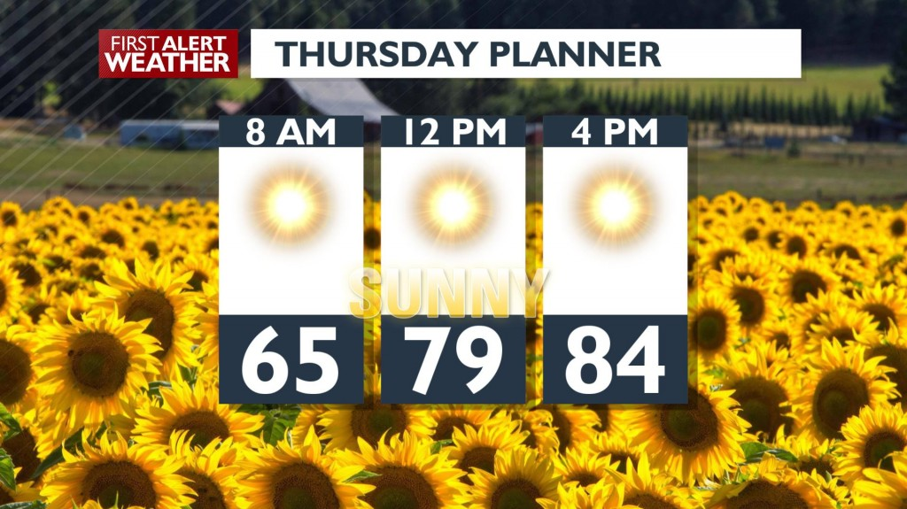 Thursday Day Planner