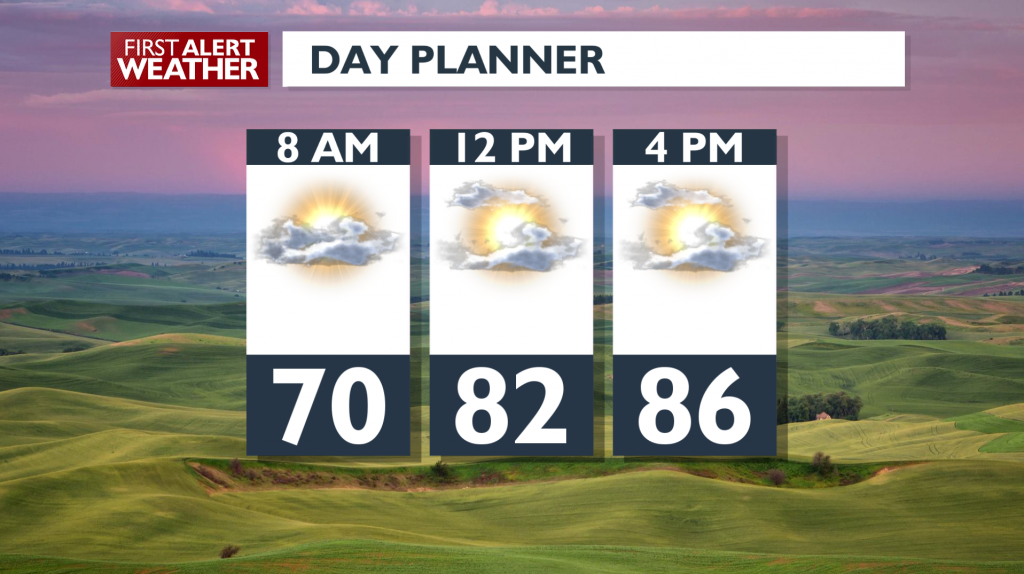 Wed Day Planner[1]