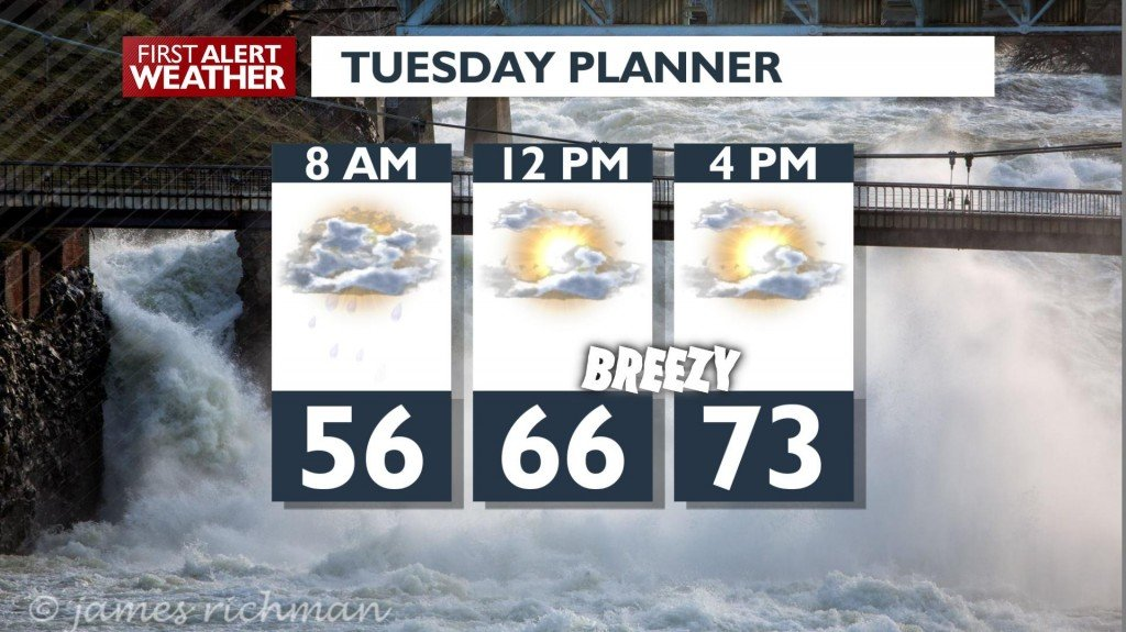 Tuesday Day Planner