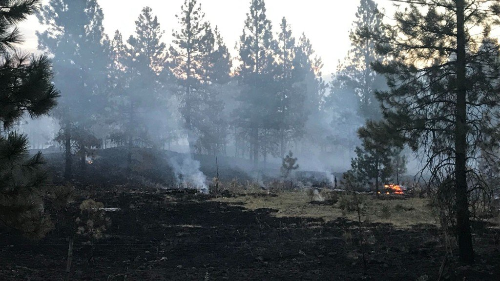 Badger Lake Fire