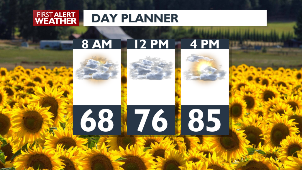 Day Planner August 20